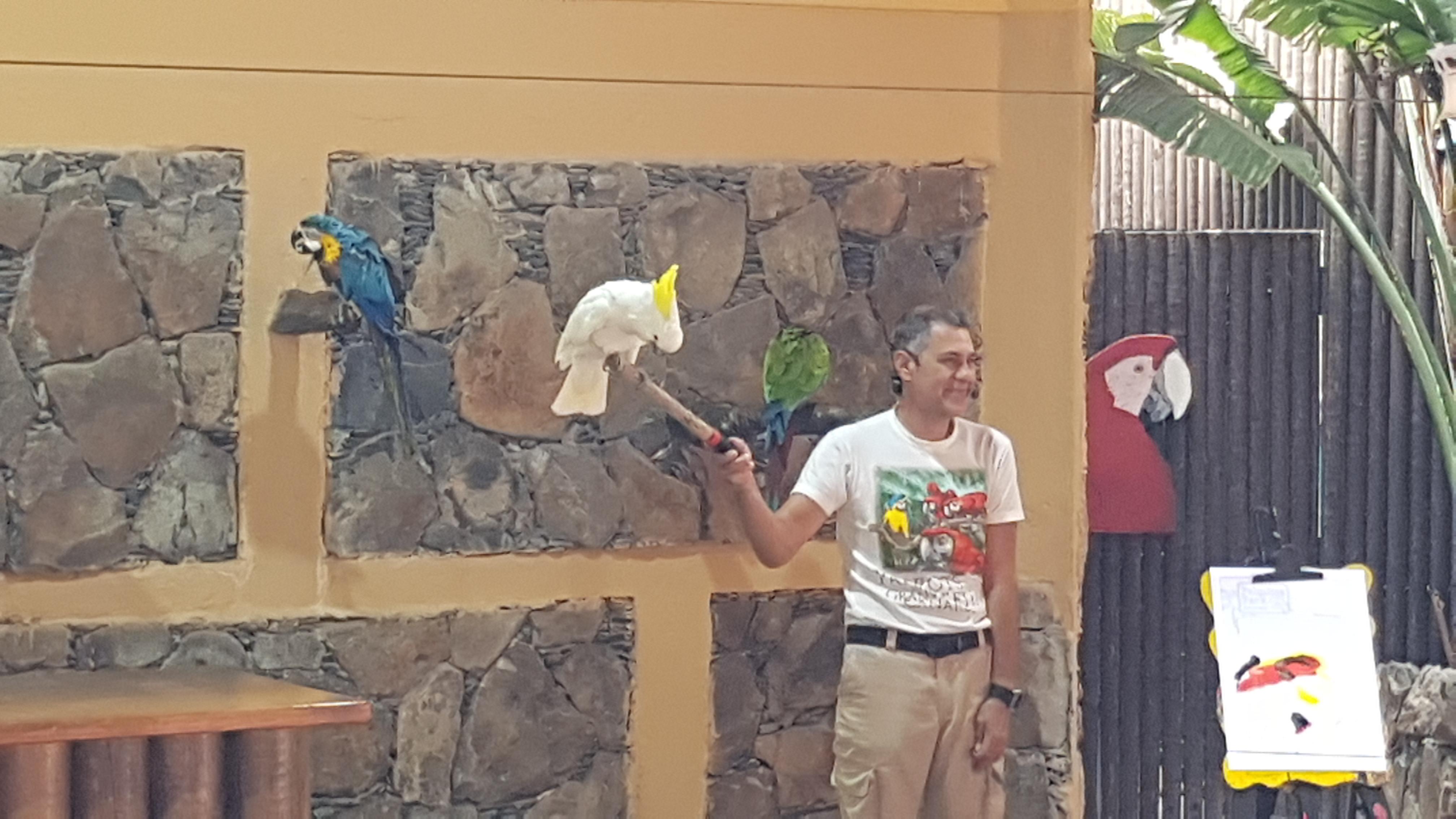 Palmitos Park Papageien-Show